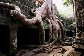 Foto-Camboya-7